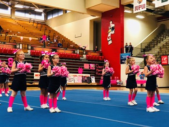McDonald Cheerleaders Perform at Pink Ribbon